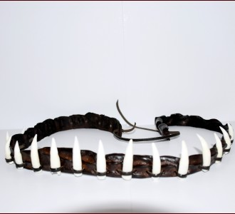Crocodile Hatband 15 teeth